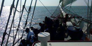 asverstrooing-zoet-water-ijsselmeer